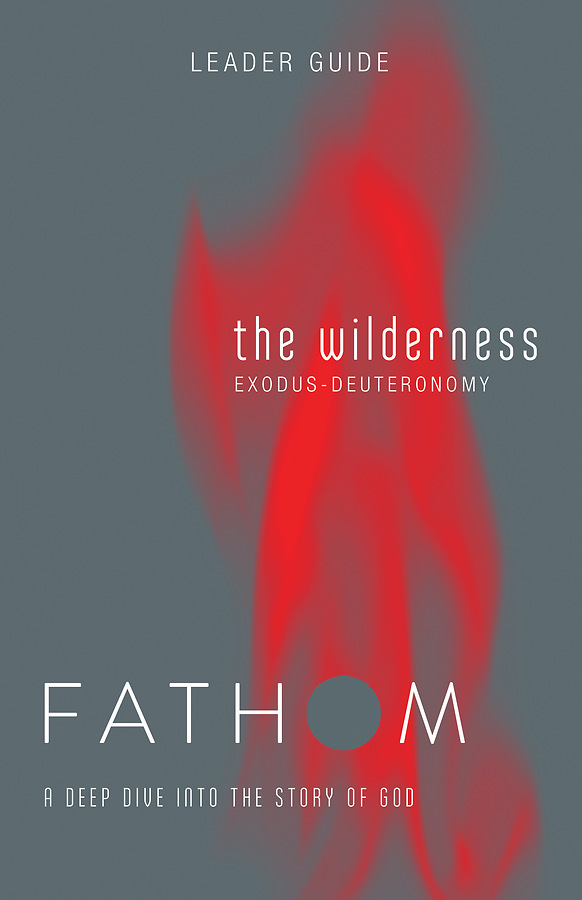 Fathom Bible Studies The Wilderness Leader Guide