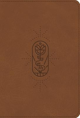 ESV Kid's Bible, Compact (Trutone, the True Vine)