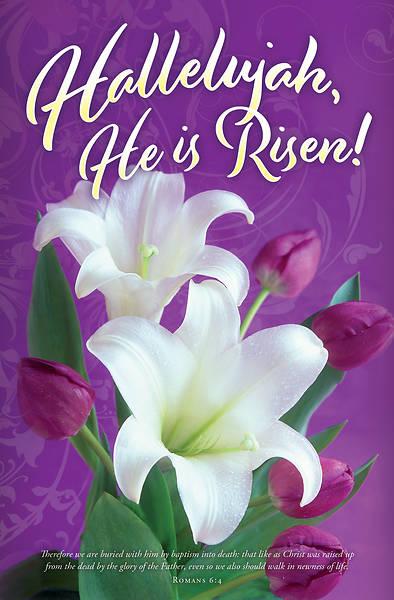 Picture of Hallelujah He is Risen! Easter Regular Size Bulletin (Pkg of 100)