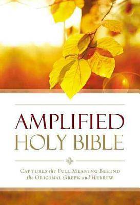 Picture of Amplified Outreach Bible