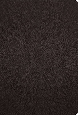 Picture of ESV Large Print Compact Bible (Buffalo Leather, Deep Brown)
