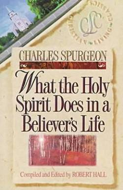 What the Holy Spirit Does in a Believers Life