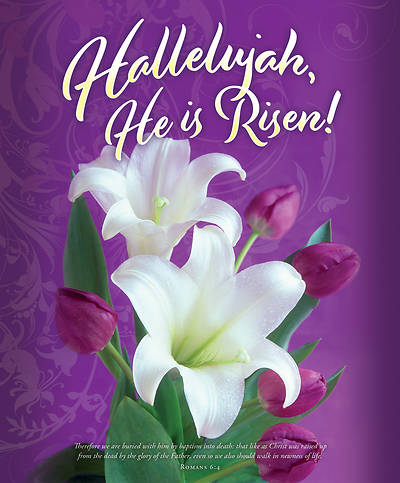 Picture of Hallelujah He is Risen! Easter Legal Size Bulletin (Pkg of 100)