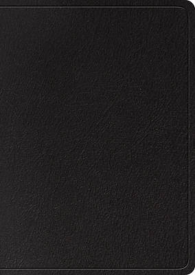 Picture of ESV Study Bible, Large Print (Black, Indexed)
