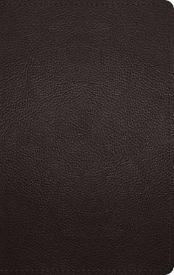 Picture of ESV Large Print Personal Size Bible (Buffalo Leather, Deep Brown)