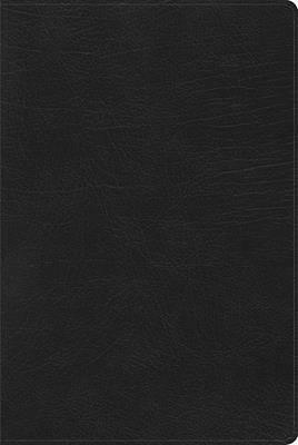 Picture of Rvr 1960 Biblia de Estudio Arco Iris, Negro Imitacin Piel Con ndice