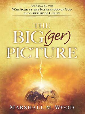Picture of The Big(ger) Picture [ePub Ebook]