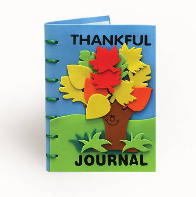 Vacation Bible School 2013 Hip-Hop Hope Pkg of 12 Thankful Journal VBS