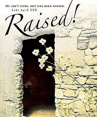 Raised! Easter Dogwood Bulletin 2012, Large Size (Package of 50)