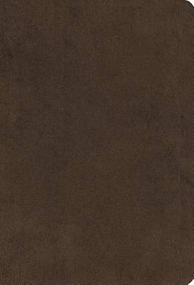 ESV Large Print Compact Bible (Microsuede, Brown)