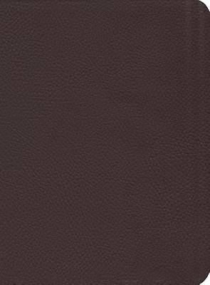 Picture of Reformation Study Bible NKJV