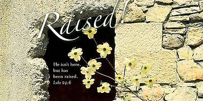 Raised! Easter Dogwood Offering Envelope 2012 (Package of 50)