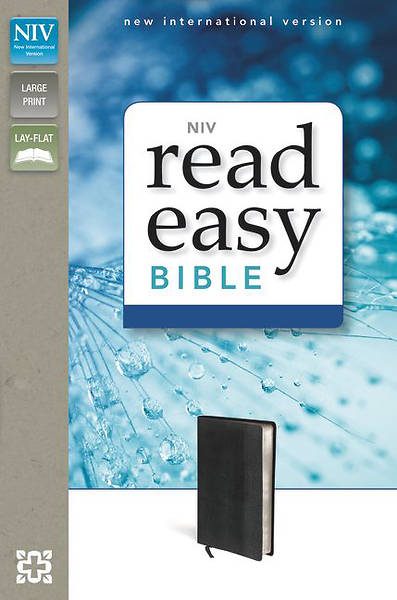 Picture of NIV Readeasy Bible