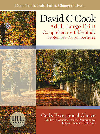 Bible-In-Life Adult LP Student Book Fall