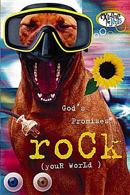 Gods Promises Rock (Your World)