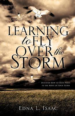 Learning to Fly Over the Storm