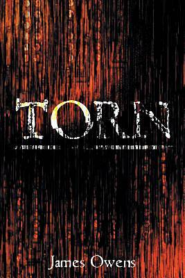 Picture of Torn