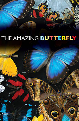 Picture of The Amazing Butterfly (Pack of 25)