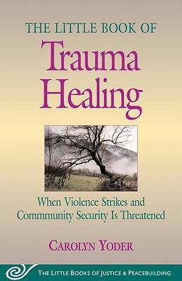 Picture of The Little Book of Trauma Healing