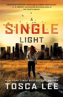 Picture of A Single Light