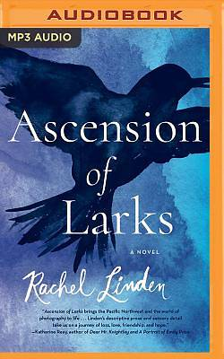 Picture of Ascension of Larks
