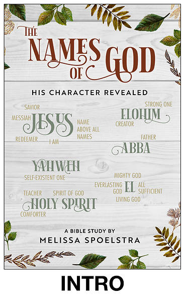 Picture of The Names of God - Women's Bible Study Streaming Video Introductory Session