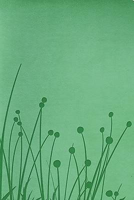 Picture of Rvr 1960 Biblia Tamano Personalizado (Green Grass) Rvr 1960 Biblia Tamano Personalizado (Green Grass)