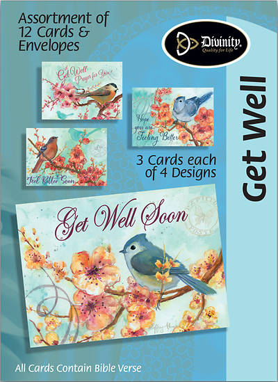 Get Well Boxed Card Flowers & Birds (Pk 12)