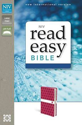 NIV Readeasy Bible