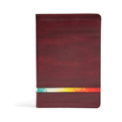 Picture of NIV Rainbow Study Bible, Maroon Leathertouch, Indexed