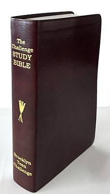Picture of CEV Challenge Study Bible-Flexi Cover