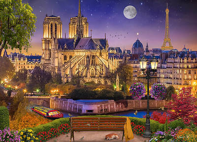 Picture of Notre Dame Night Jigsaw Puzzle