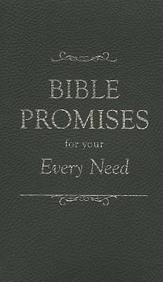 Bible Promises for Your Every Need