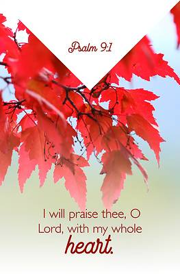 Picture of O Lord Bulletin (Pkg 100) General Worship