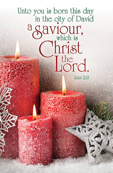 A Saviour, Christ the Lord Christmas Regular Size Bulletin