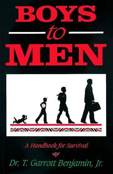 Picture of Boys to Men