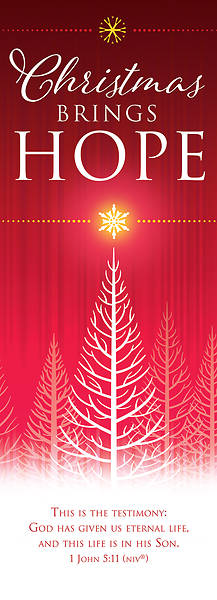 Picture of Christmas Brings Hope 2' x 6' Fabric Banner 1 John 5:11 NIV