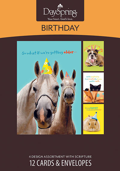 So What if Were Getting Older - Birthday Humor Boxed Cards - Box of 12