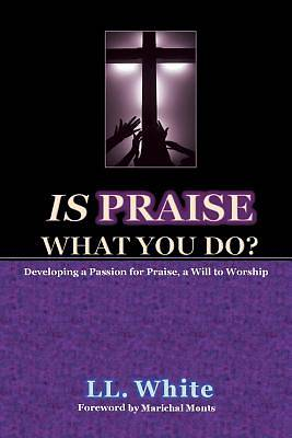 Picture of Is Praise What You Do?