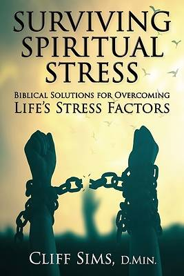 Picture of Surviving Spiritual Stress