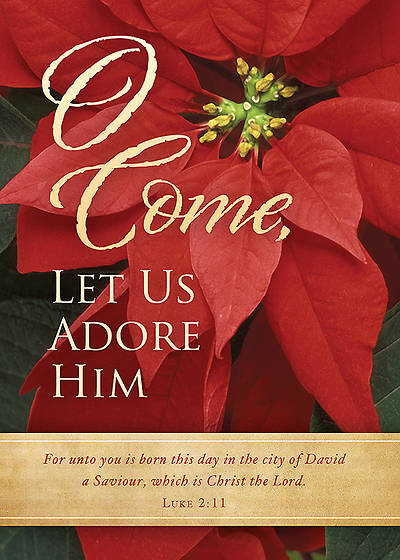 O Come Let Us Adore Him Boxed Christmas Cards - Box of 12