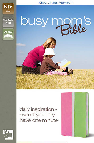King James Version Busy Moms Bible