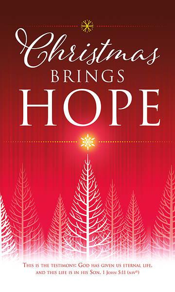 Picture of Christmas Brings Hope 3' x 5' Vinyl Banner 1 John 5:11 NIV