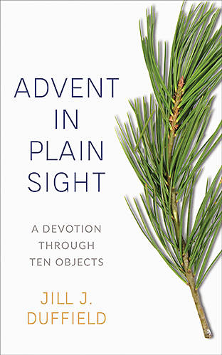 Picture of Advent in Plain Sight