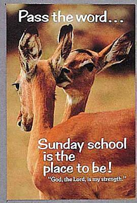 Sunday School Deer Postcard (Package of 25)