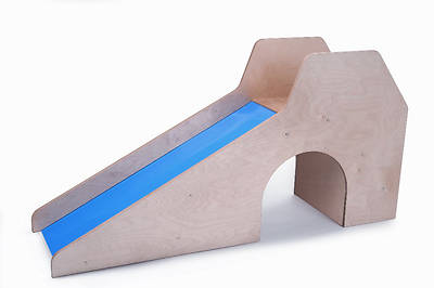 Slide With Stairs and Tunnel