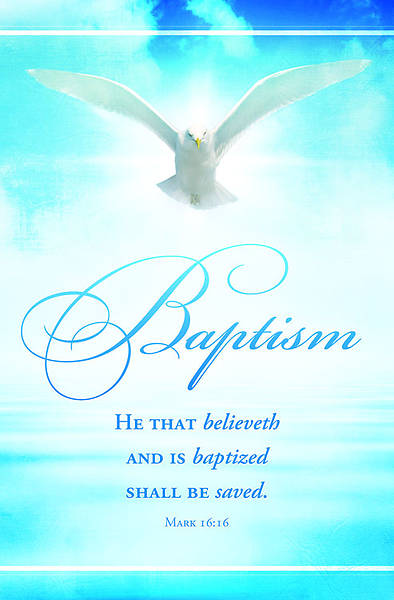 Baptism He That Believeth Bulletin, Regular (Package of 100)