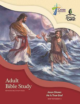 Picture of Adult Bible Study (Nt2)
