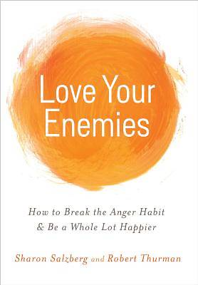 Picture of Love Your Enemies
