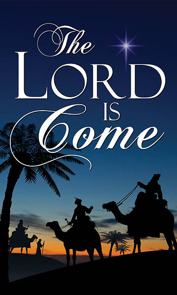 Nativity Series Lord is Come Banner 4 x 6